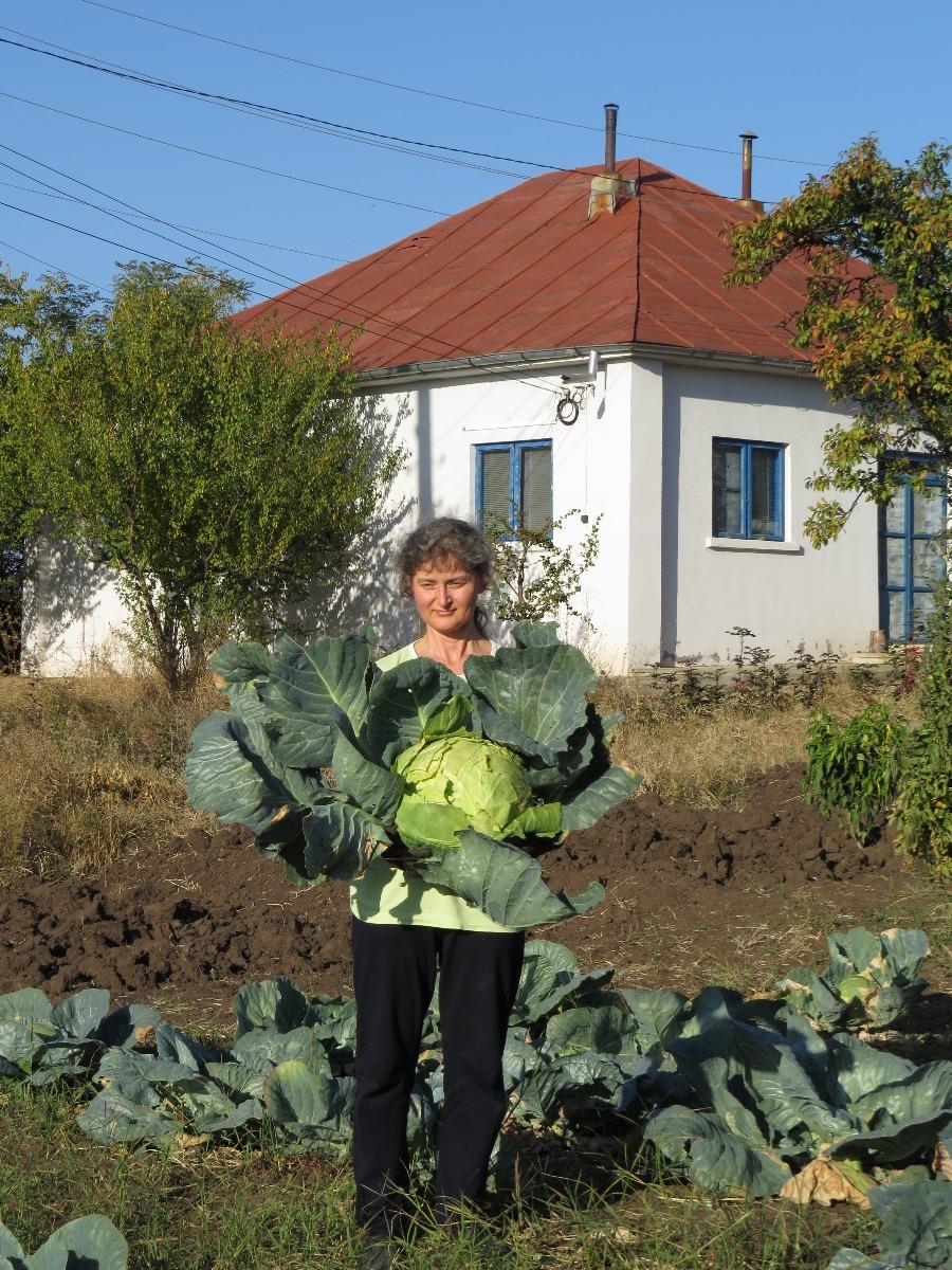 Dr Cristina Aosan, la ferma bio de la Varlezi
