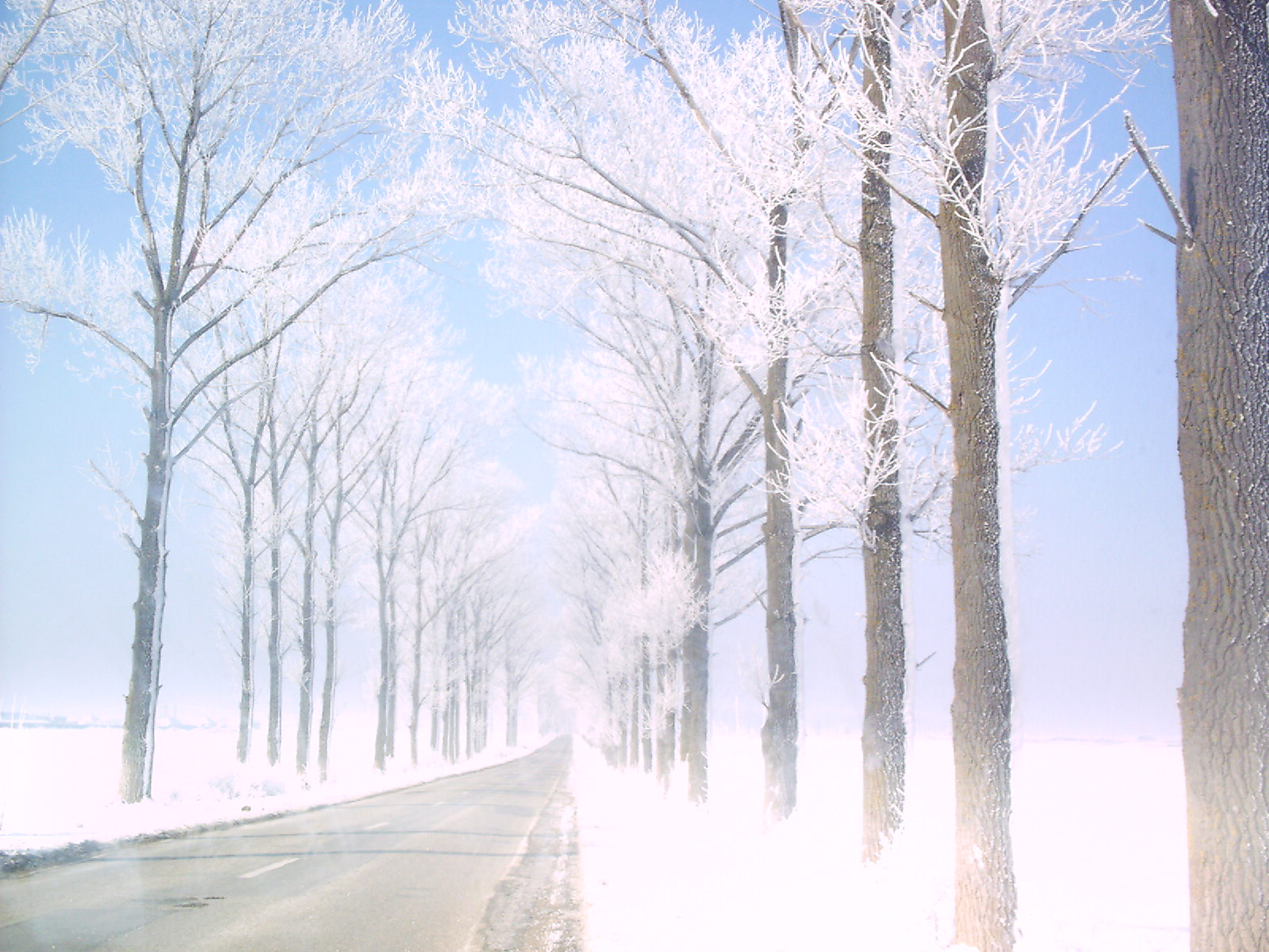 Drum prin viata